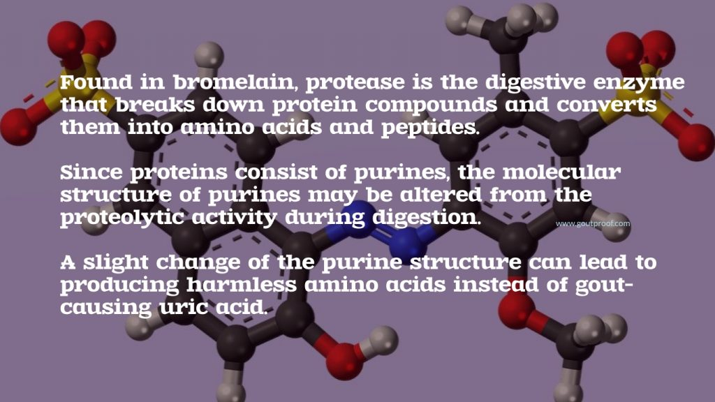 Bromelain protease can change purine molecular structure